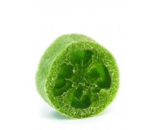 סבון ליפה תה ירוק