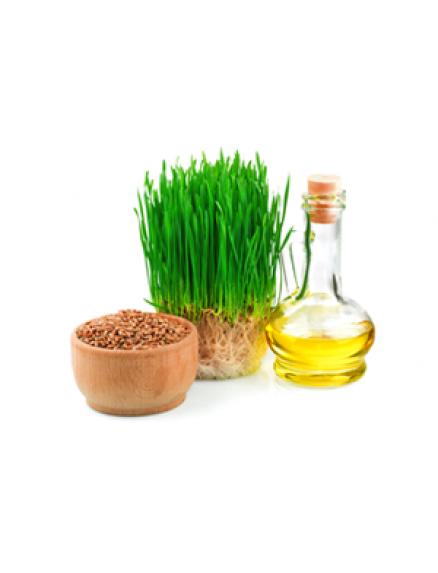 Wheat Germ Oil 1 Liter